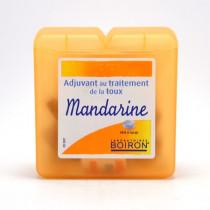 Boiron Mandarin Paste –...