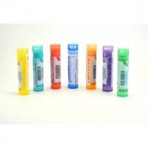 Muqueuse Anale - 80 Pillules - Homeopathic moncoinsante.com